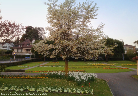 spring, flowers, lausanne, switzerland, spring in lausanne, pictures, photographs
