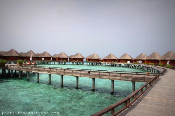 Maldives, Baros Island, Baros Maldives, Baros Maldives experience, Travel, traveler, wandelust, travel story, trip, photography, travel picture, Indian travelers