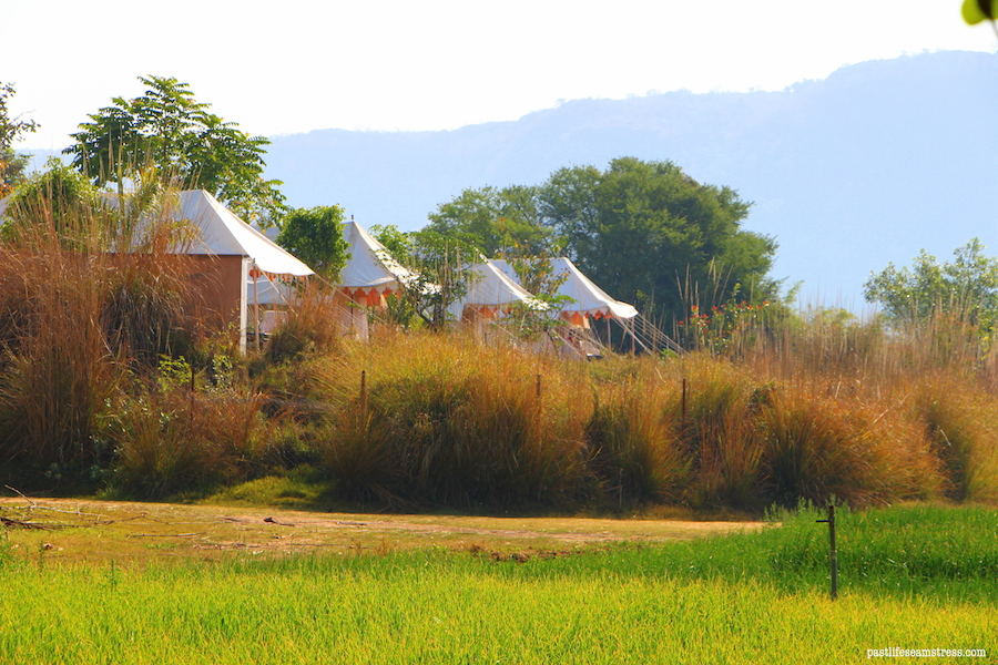 khem villas, ranthambore, ranthambore national park, jungle camp, luxury jungle camp, where to stay in ranthambore, best jungle camp, things to do in khem villas, things to do in ranthambore, ranthambore national park guide